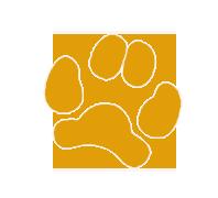 Mascota Graphic